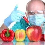 GMO – Kto potrzebuje? Niewygodne fakty