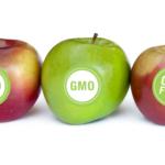 6 marek spożywczych naszpikowanych GMO – wiedziałeś o tym?