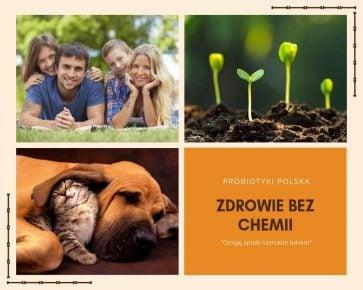 ProBiotyki Polska podbiją rynek. Zafunduj sobie i rodzinie zdrowie bez chemii