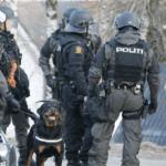 Dania zamyka granice z Niemcami z powodu imigrantów z Afryki