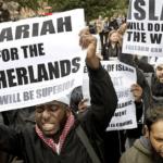 Likwidacja obozowiska imigrantów w Szwecji [Film]