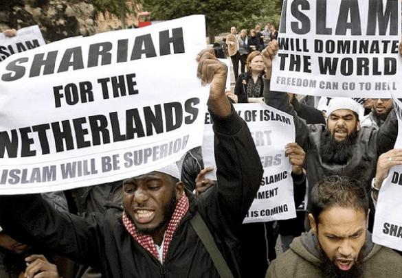 Likwidacja obozowiska imigrantów w Szwecji