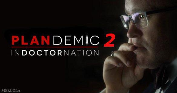 Plandemia II - InDOKTORnacja