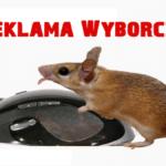 Nowy anty spot wyborczy Premier Ewy Kopacz